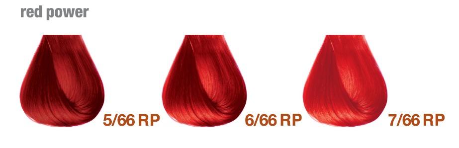 Ярко красные цвета BBCOS Innovation EVO Палитра