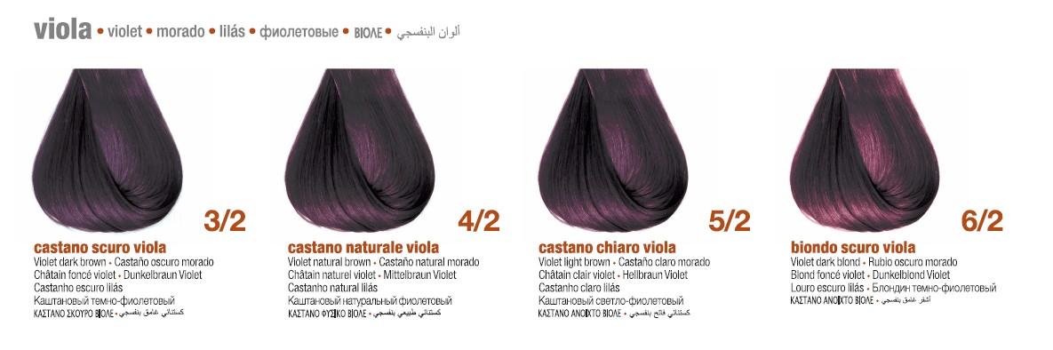 Фиолетовые цвета BBCOS Innovation EVO Палитра